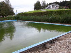 Sanierung Schwimmbad Neukirchen