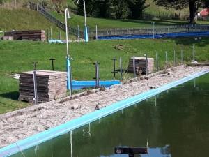SchwimmbadSanierung (16)